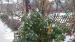 Zima 2 2021-04-05 at 16.49.05.jpeg