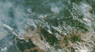 Płoną lasy Amazonii
