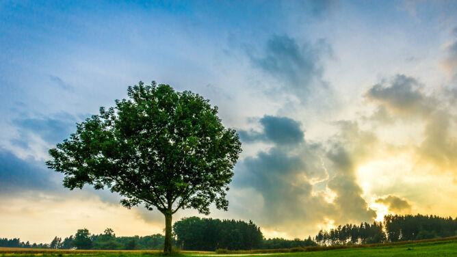 Prognoza pogody na dziś: zachmurzone niebo nad Polską, temperatura do 26 stopni