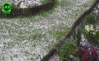 Opady krupy śnieżnej